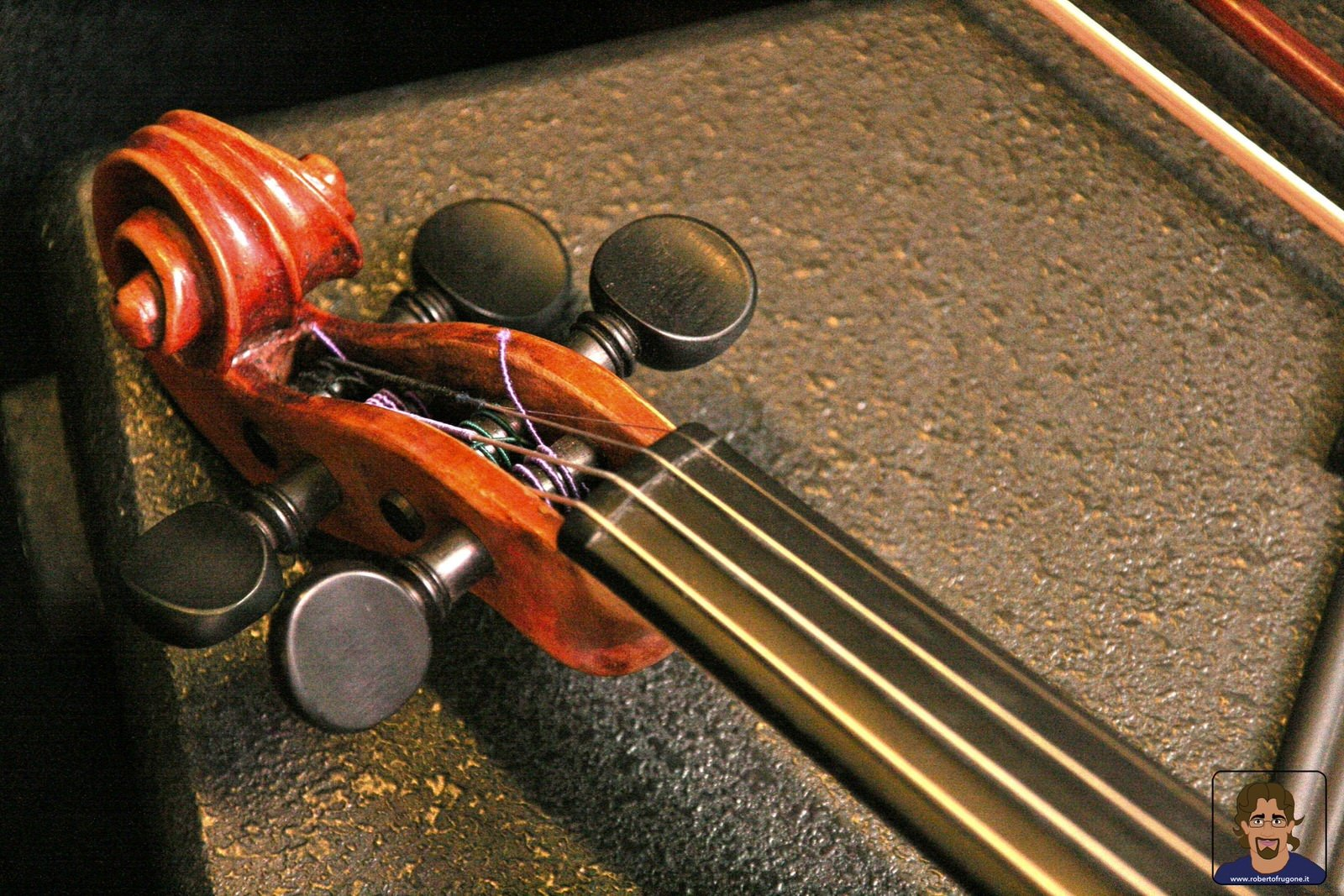 Totem Studio Sala Prove Musicali Casarza Ligure violino – foto Lamberto Salvan