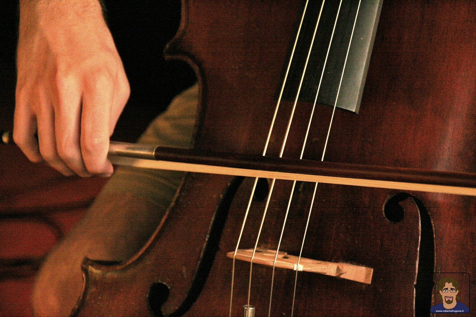 Totem Studio Sala Prove Musicali Casarza Ligure violoncello – foto Lamberto Salvan